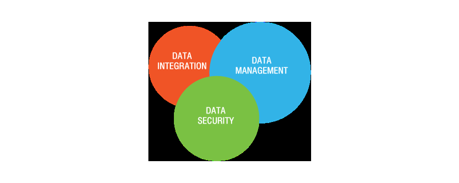 DATA MANAGEMENT SERVICE